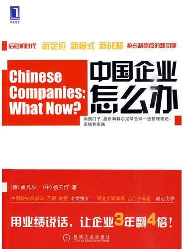 中国企业怎么办 目标、标杆对比和创新战略