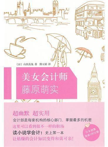 美女会计师藤原萌实(史上第一本!读小说,学会计精髓!绝密!另类!)