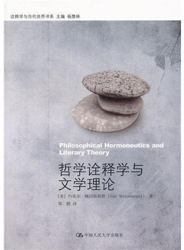 哲学诠释学与文学理论(诠释学与当代世界书系)