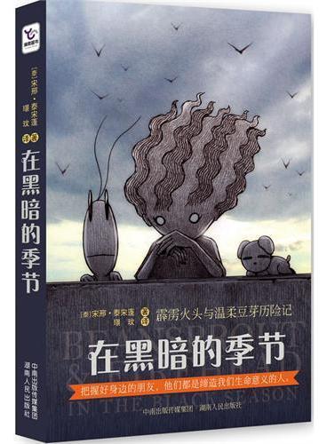 在黑暗的季节:霹雳火头与温柔豆芽历险记(一本关于友情、信任和成长的图文小说)