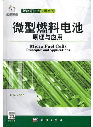 微型燃料电池原理与应用