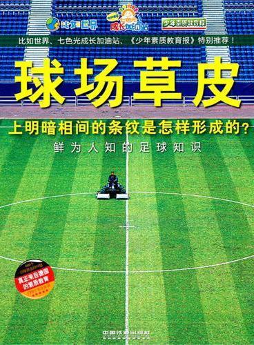 球场草皮上明暗相间的条纹是怎样形成的?——鲜为人知的足球知识