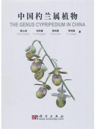中国杓兰属植物