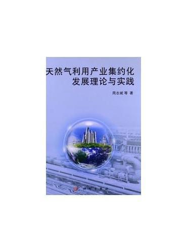 天然气利用产业集约化发展理论与实践