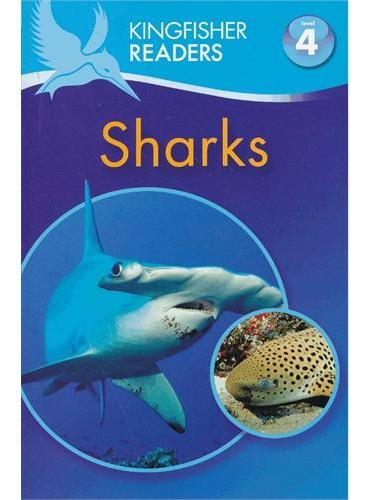 Kingfisher Readers Level 4: Sharks 鲨鱼 ISBN9780753469064