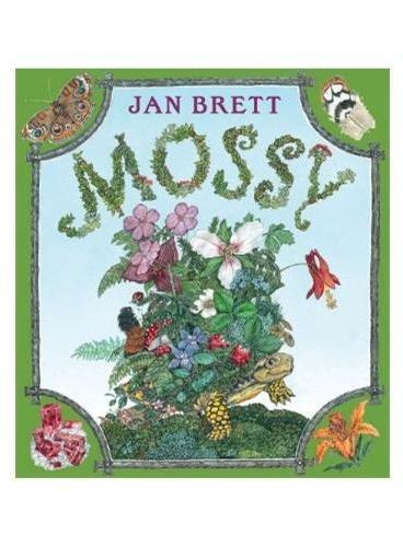 Mossy(by Jan Brett) 乌龟摩西(纽约时报畅销书,精装) ISBN9780399257827