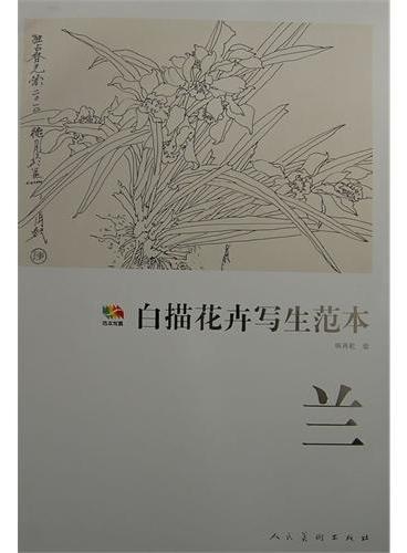 范本传真·白描花卉写生范本兰