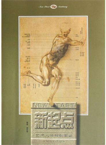 新起点艺术人体解剖图鉴