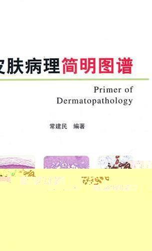 皮肤病理简明图谱