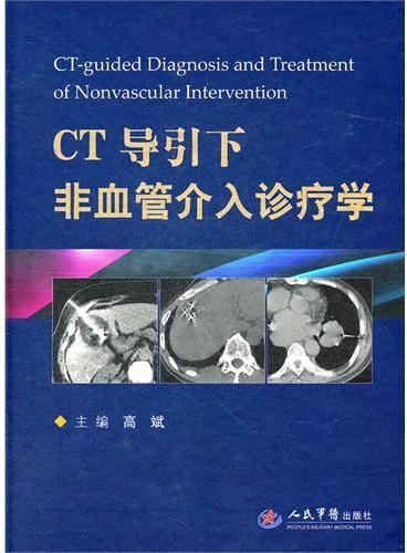 CT导引下非血管介入诊疗学