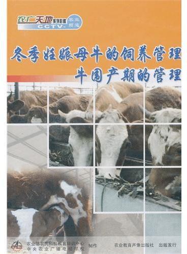 冬季妊娠母牛的饲养管理 牛围产期的管理(DVD)