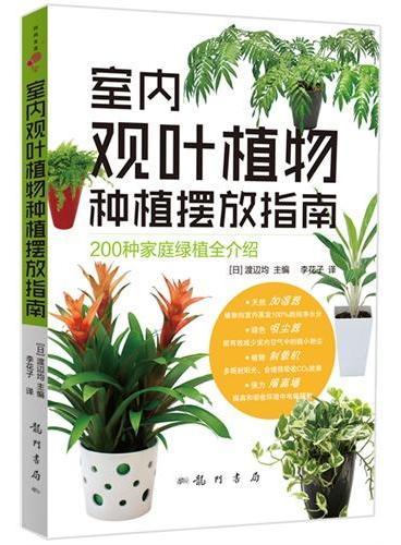 室内观叶植物种植摆放指南