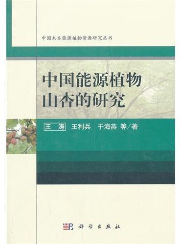 中国能源植物山杏的研究