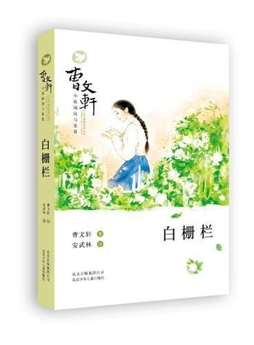 曹文轩小说阅读与鉴赏——白栅栏