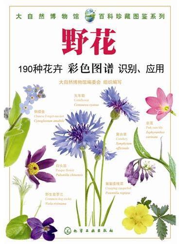 大自然博物馆.百科珍藏图鉴系列--野花