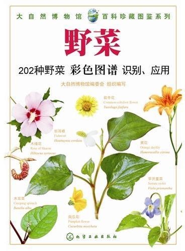 大自然博物馆·百科珍藏图鉴系列--野菜