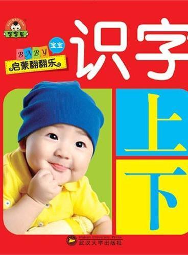(宝宝蛋)宝宝启蒙翻翻乐:识字