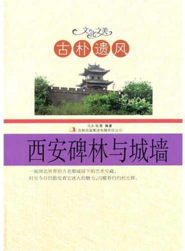 中小学生阅读系列之文化之美--古朴遗风.西安碑林与城墙(四色印刷)