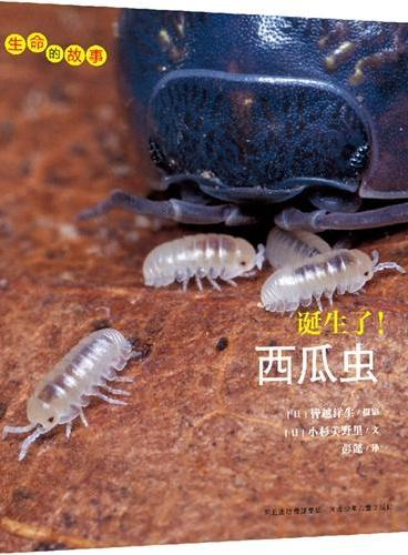 生命的故事系列:诞生了!西瓜虫
