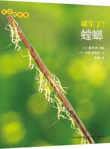 生命的故事系列:诞生了!螳螂