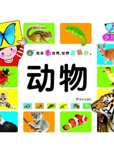 河马文化——我来看世界 世界真奇妙?动物