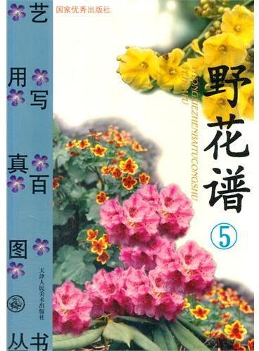 艺用写真百图--野花谱[5]
