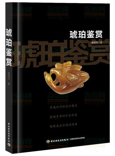 琥珀鉴赏(全面介绍中国老琥珀的专著,真伪琥珀鉴赏方法,展露跨越两千多年的百余件琥珀真品风貌)