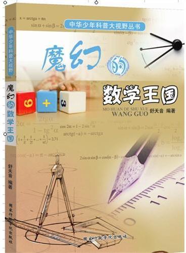 中华少年科普大视野丛书:魔幻的数学王国