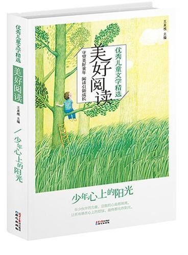 优秀儿童文学精选·美好阅读系列:少年心上的阳光