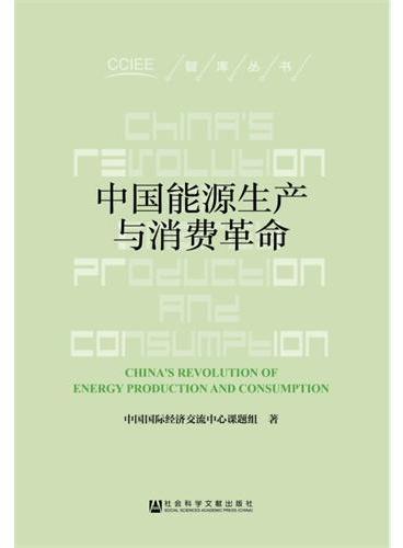 中国能源生产与消费革命