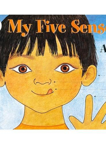My Five Senses (Let's Read and Find Out)  自然科学启蒙1:我的五种感觉ISBN9780064450836