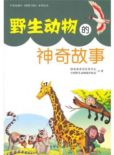 野生动物的神奇故事