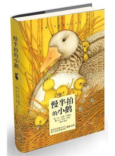 慢半拍的小鹅(博洛尼亚国际儿童书展图画书奖等多项大奖获奖图书)