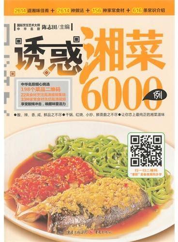 诱惑湘菜6000例