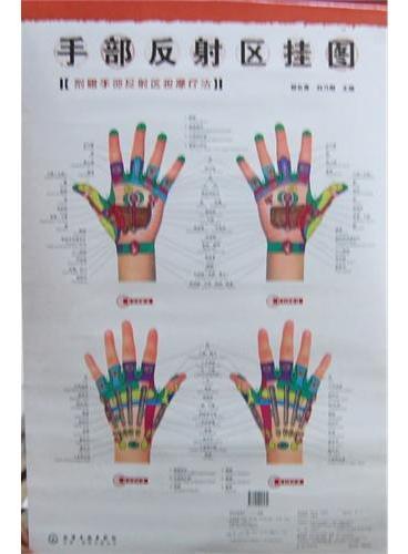 手部反射区挂图(附赠手部反射区按摩疗法)