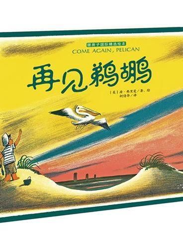 暖房子国际精选绘本:再见鹈鹕(一个小男孩,一只鹈鹕,一份跨越语言、物种的友谊。一段与自然共存的美好时光,穿越时空轻轻降落在我们心中。)
