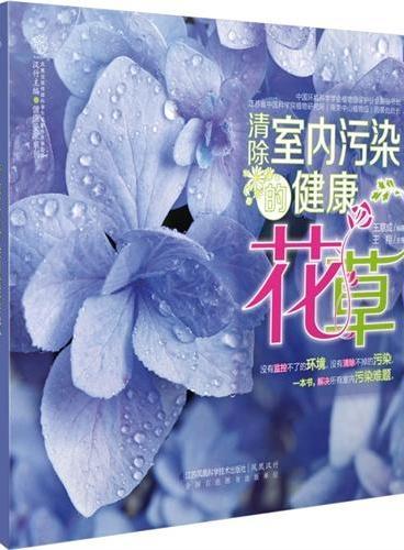 清除室内污染的健康花草(汉竹)
