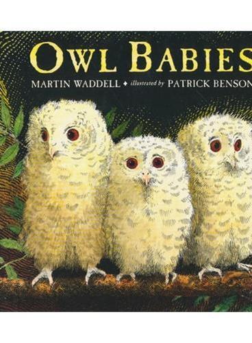 Owl Babies猫头鹰宝宝(美国版,平装)ISBN9780763617103