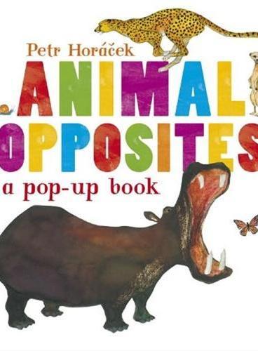 Animal Opposites [Hardcover]动物相反词(精装)ISBN9780763667764