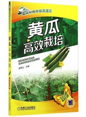 黄瓜高效栽培(高效种植致富直通车)