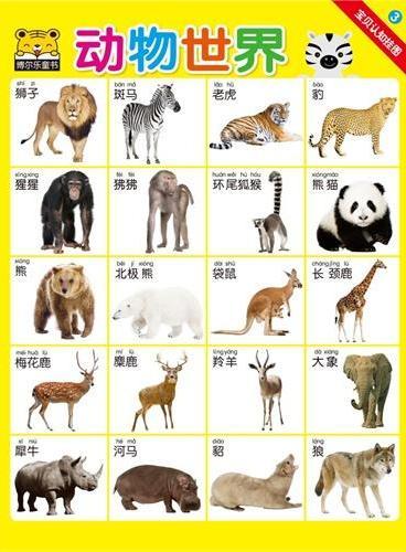 动物世界-宝贝认知挂图