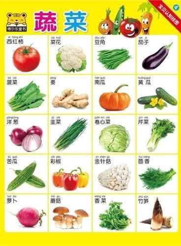 蔬菜-宝贝认知挂图