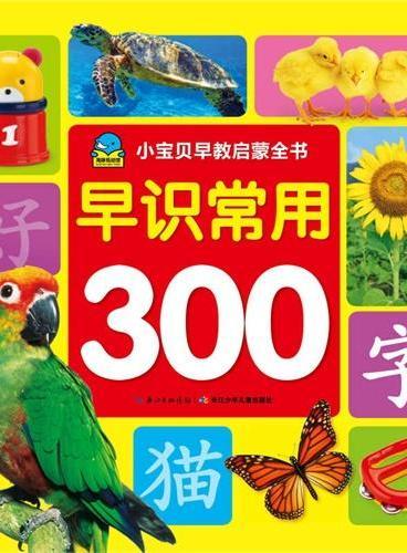 小宝贝早教启蒙全书:早识常用300字