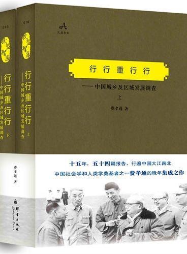 行行重行行——中国城乡及区域发展调查(上、下)