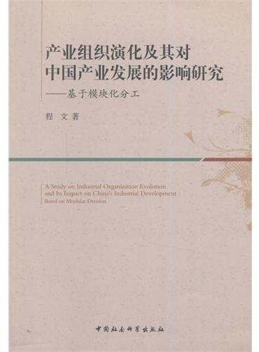 产业组织演化及其对中国产业发展的影响研究-基于模块化分工