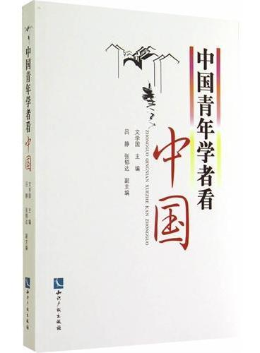 中国青年学者看中国