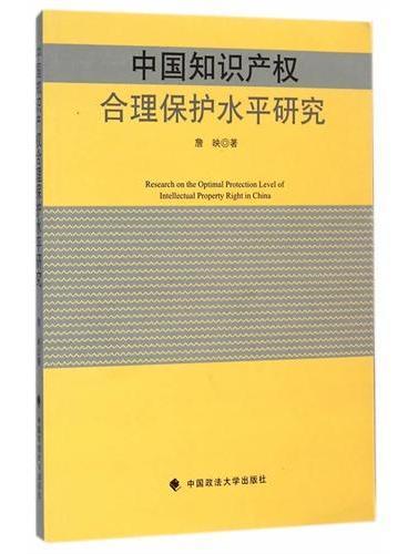 中国知识产权合理保护水平研究