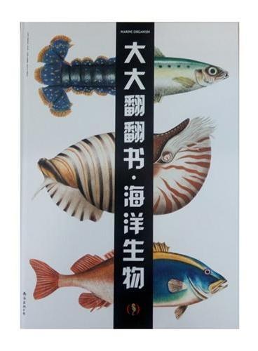大大翻翻书-海洋生物