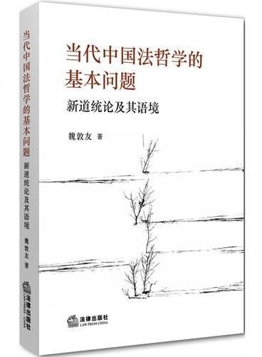 当代中国法哲学的基本问题:新道统论及其语境