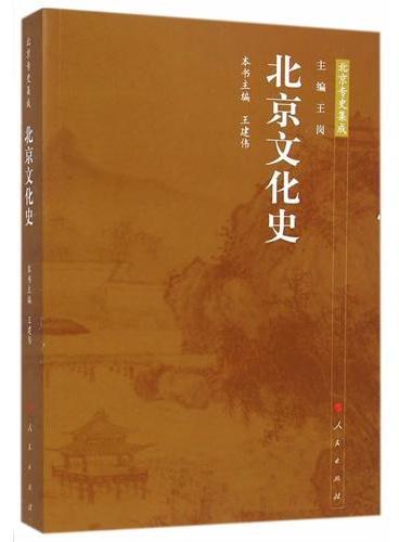 北京文化史—北京专史集成